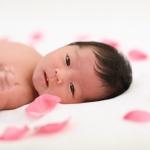 newborn photo-33