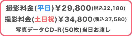 家族写真プラン料金¥29,800
